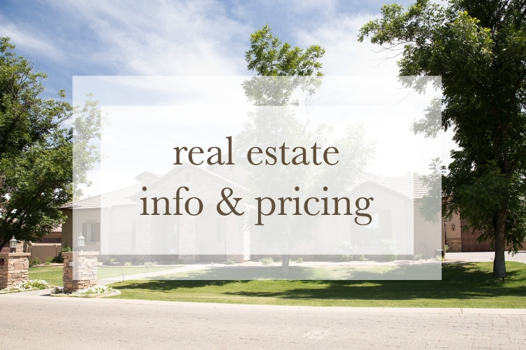 real estate info